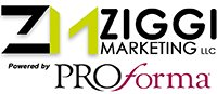 Ziggi Marketing (R) Website